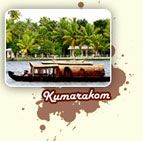 Kumarakom is associated with backwater tourism