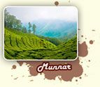 Munnar the popular hill station